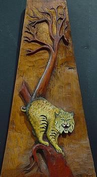 Lynx by Ron Sylvia
