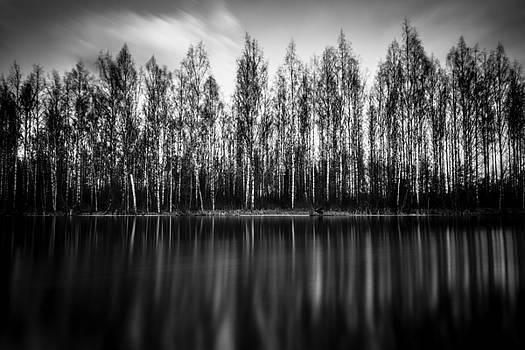 Lyrica by Matti Ollikainen