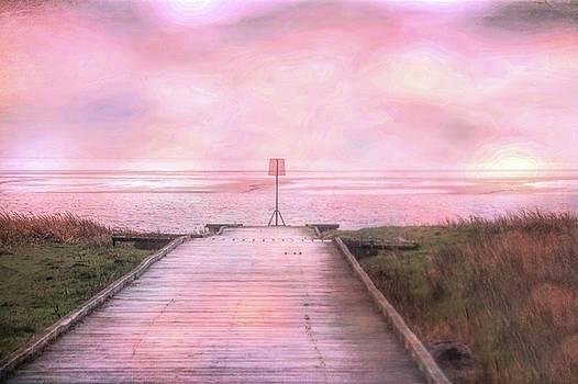 Lytham jetty by Susan Tinsley