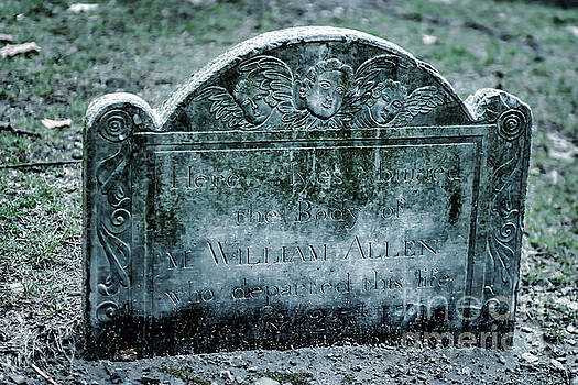 Tamyra Ayles - M. William Allen