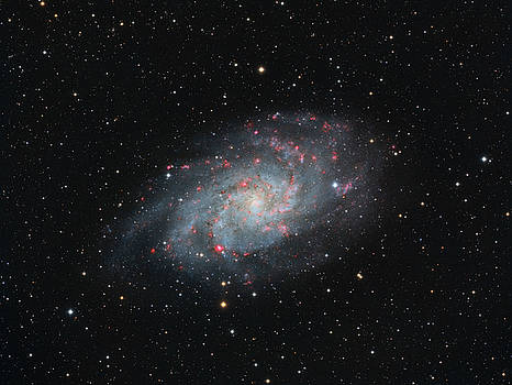 M33 - Triangulum by Dennis Sprinkle