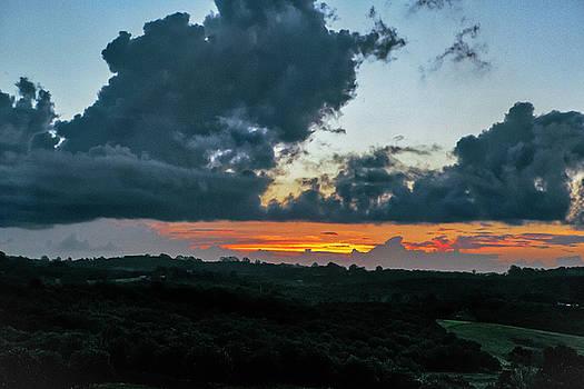 Macadamia Sunset by Chris Hood