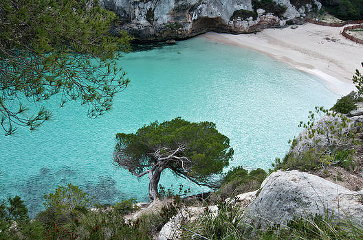 Pedro Cardona Llambias - Macarelleta turquoise jewell by pedro cardona