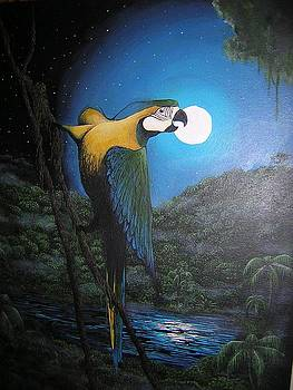 Macaw In Moon by Talia Helton