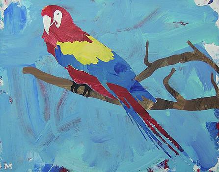 Macaw by Candace Shrope