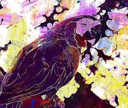 Macaw Parrot Bird Pet Wildlife  by PixBreak Art