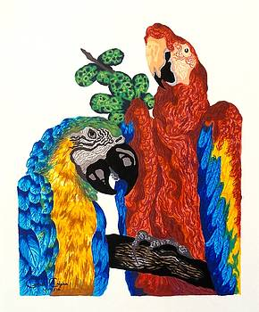 Macaws by Gabriel Cajina