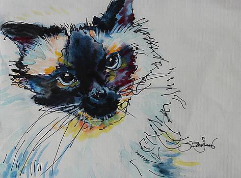 Macchiato by Susan Davies