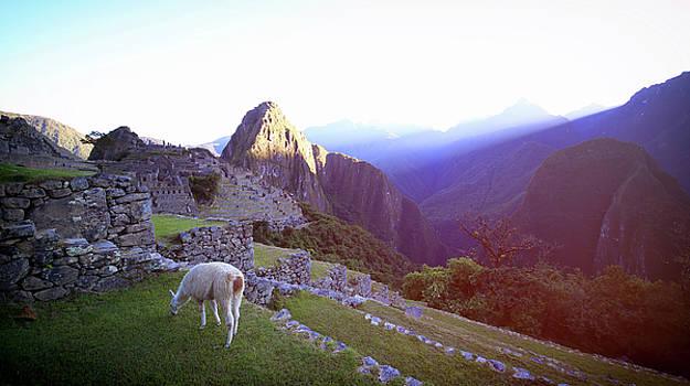 Machu Picchu at Sunrise 2 by Sleepy Weasel