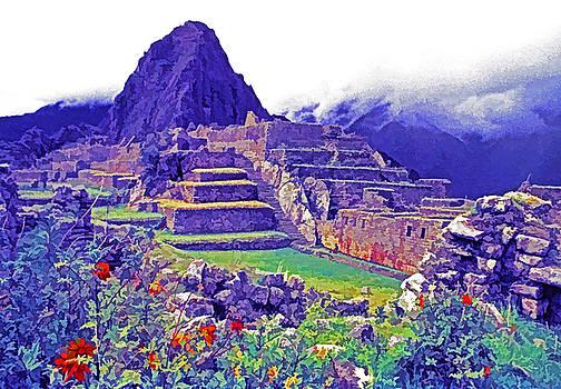 Dennis Cox - Machu Picchu