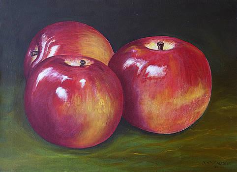 Macintosh Apples by Dinny Madill
