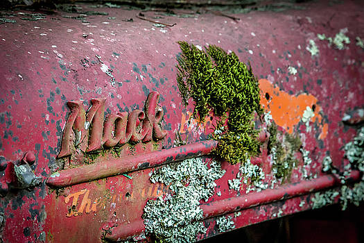 Lisa Lemmons-Powers - Mack and Moss
