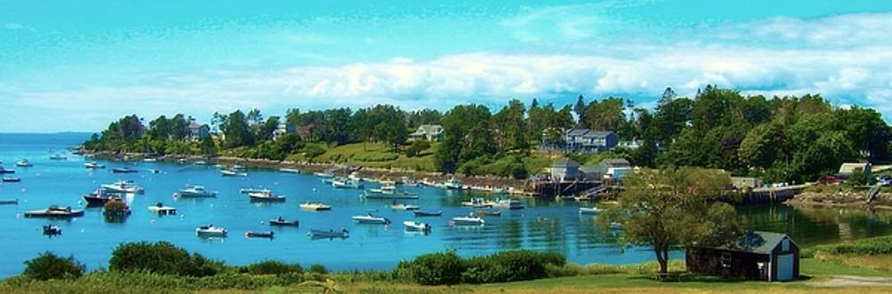 Mackerel Cove on Bailey Island by Lisa Gilliam