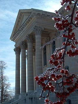 Macoupin County Courthouse with Iced Crabapples by Denise   Hoff