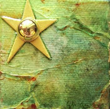 Macro Star Shines by Shawna Scarpitti