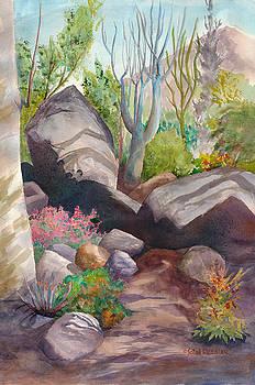 Madagascar Garden by John Ressler