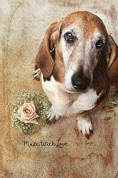 Made With Love II by Joan Bertucci