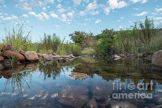 Billy Moore - Madera Creek reflections