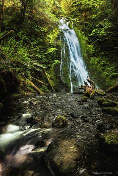 Madison Falls - An Elwha Sanctuary by Thomas Schoeller