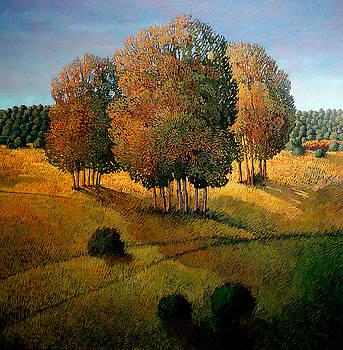 Madrugada de Picuris by Donna Clair