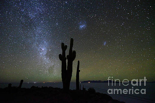 Magellanic Clouds Milky Way and Cactus Silhouette Incahuasi Island Bolivia by James Brunker