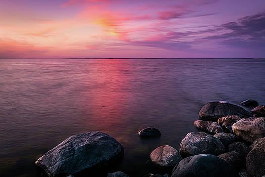 Magenta Evening by Gary Harris