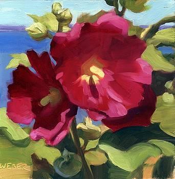 Magenta by Kathleen Weber