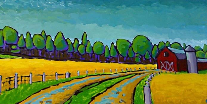 Maggies Farm by KC Chapman