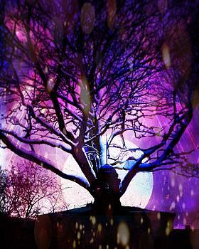Magic by Aiden Nettavong