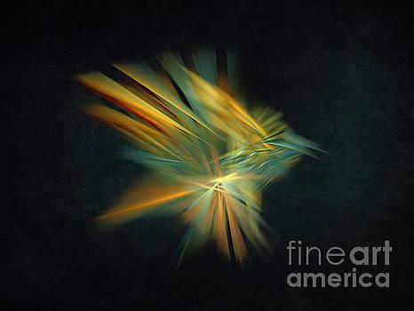 Justyna Jaszke JBJart - Magic Bird Fractal Art