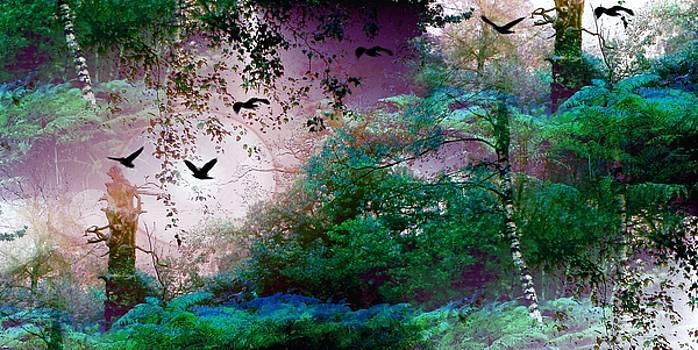 Magic Forest by Romuald  Henry Wasielewski
