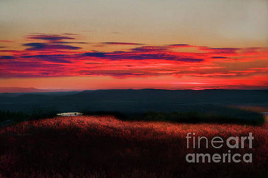 Dan Friend - Magic hour at Dolly Sods on Canyon Rim Trail
