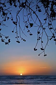 Magic Island Sunset by Seil Frary