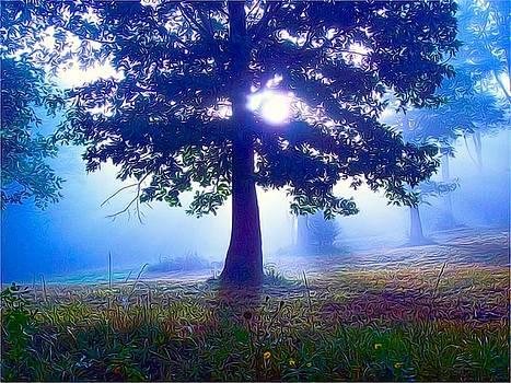 Magic Morning by Carolyn Wright