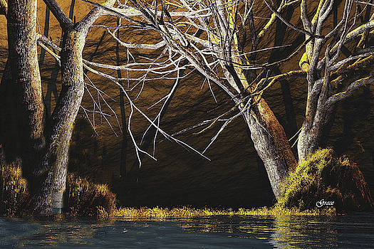 Magic of the Bog by Julie Grace