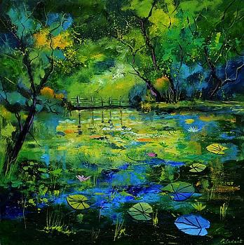 Magic pond 881701 by Pol Ledent