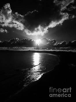 Magic Sunrise by The Art of Alice Terrill
