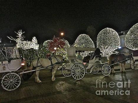 Magical Carriage Ride by Barbara Plattenburg