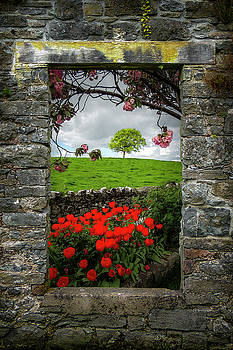Magical County Clare Countryside by James Truett