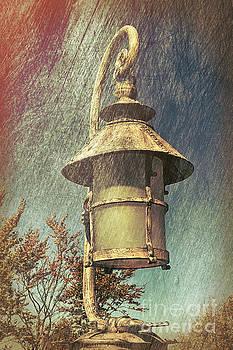Magical Lantern by Mariola Bitner