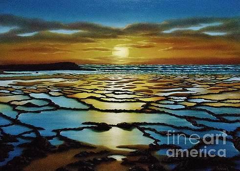 Magical Sunset by Paula Ludovino