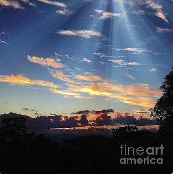 Magnetic Sunset by The Art of Alice Terrill