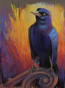 Magnificent Bird by Susan Jenkins