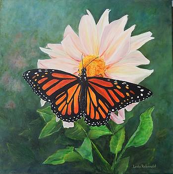 Magnificent Monarch by Leda Rabenold