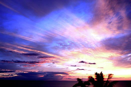 Magnificent Sunset by Karen Nicholson