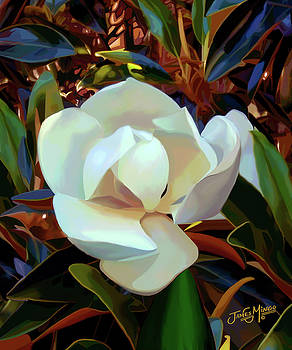 Magnolia 1 by James  Mingo
