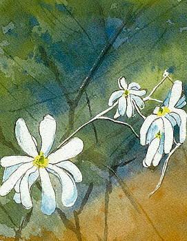 Magnolia 3 of 3 by Lynn Babineau