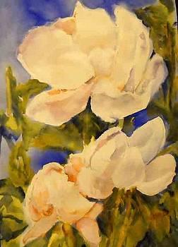 Magnolia Blooms by Linda Rupard