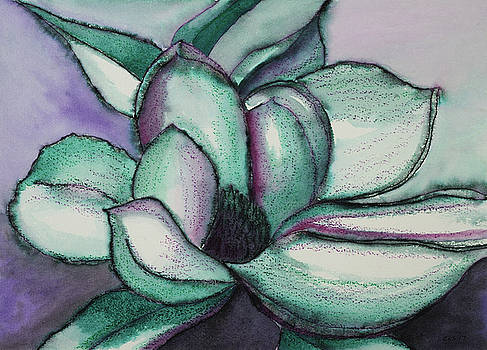 Magnolia Blossom at Midnight by Cynthia Schoeppel