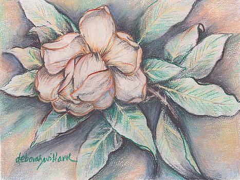 Magnolia Blossom in Pastel by Deborah Willard